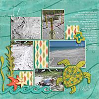 Turtle-tracks-LBK-Yin_template-219-copy.jpg