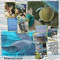 TurtleManatee_10252020.jpg