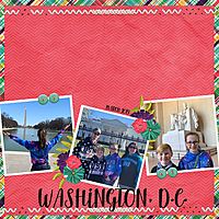 WASHINGTON_DC_WEB1.jpg