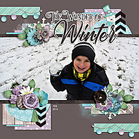 WEB_2014_FEB_Winter.jpg