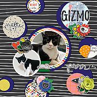 WEB_2020_GIZMO.jpg