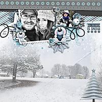 WEB_2020_JAN_Snow_2.jpg