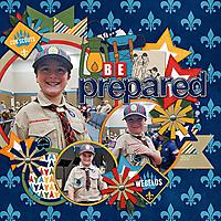WEB_BoyScouts_D.jpg