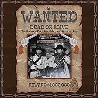 Wanted-Roundup-Duo.jpg