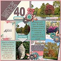 Week40JBS-000-Page-1.jpg