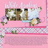 White-Azaleas.jpg