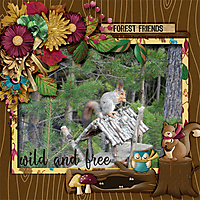 Wild-and-free5.jpg