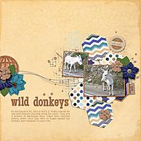 WildDonkeys.jpg