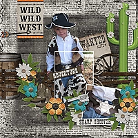 WildWest-copy.jpg