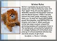 Winter-Rules.jpg