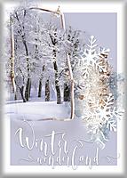 Winter-Wonderland16.jpg