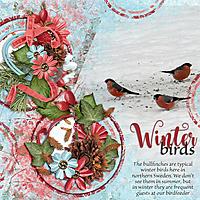 Winter-birds1.jpg