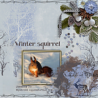 Winter-squirrel.jpg