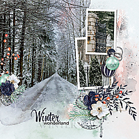 Winter-winter-wonderland-TD-121818.jpg