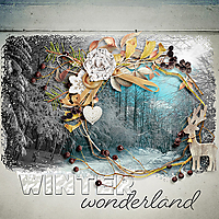 Winter-wonderland-etd.jpg