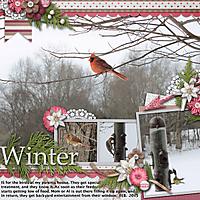 Winter9.jpg