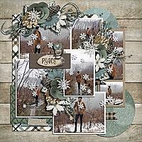Winter_woods_CK_and_Lots_of_memories_TD_-_Ella.jpg