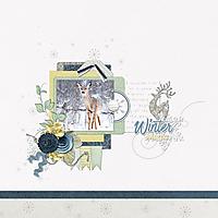 Wintermagic-DianaS.jpg