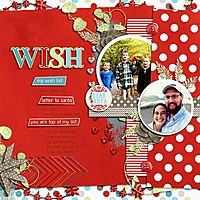 Wish_List_cap_bushelpeck_RFW.jpg