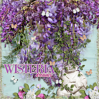 Wisteria_Dreams.jpg