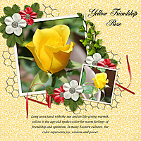 Yellow-Friendship-Rose.jpg