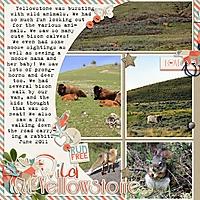 Yellowstone1_copy.jpg