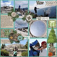 Yosemite2011_ViewFromTheDomeLeft_490x490_.jpg