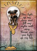 You-Light-Up-My-Life2.jpg