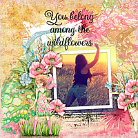 You-belong-among-the-wildflowers.jpg