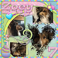 Zoey_Hanet_smll_bday_2020_7_PrelP_EmphBord_Templ_Vol7_t1.jpg