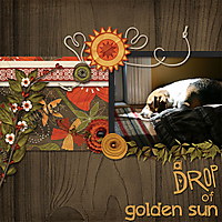 a_drop_of_golden_sun_copy.jpg