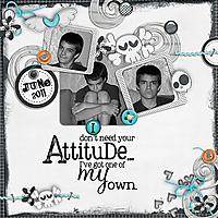 attitude_copy.jpg