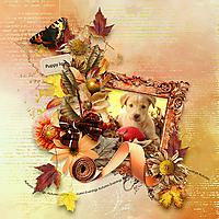 autumn_evening_1.jpg