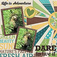 b_adventure_dare_mfish_SunnyDays_04_sml.jpg