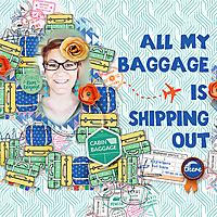baggageWEB.jpg