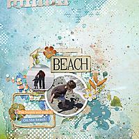beach_cwxfurst_dip_of_summer_rfw.jpg