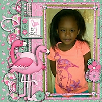 bgd_dd_Edyn_flamingo.jpg