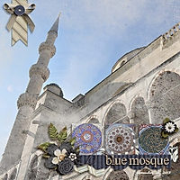 blue_mosque_lily.jpg