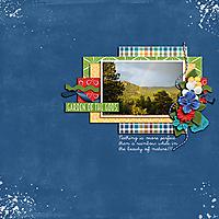cap-travelCO-copy.jpg