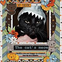 cats-meow.jpg