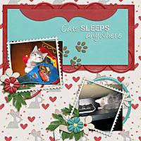 cats_sleeps.jpg