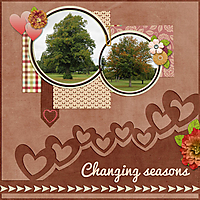 changing_seasons_sml_jbs_falling_in_love_jbs-makelifegrand-tp1.jpg