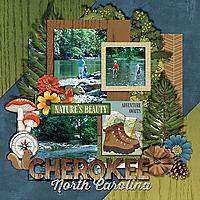 cherokee-stream.jpg