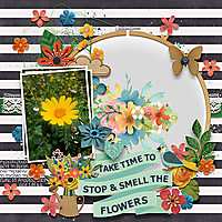 clever-monkey-graphics-Spring-Floral-embroidery-frames.jpg
