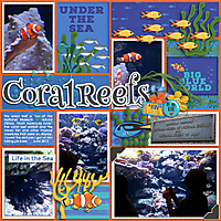 coralreefsWEB.jpg