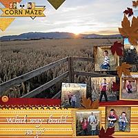 corn_maze4.jpg