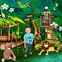 crazy-jungle_ks.jpg