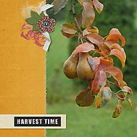 ctSGS-harvesttime.jpg