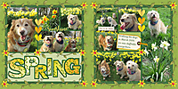 dbl_spring_pocket_daffodils_p2_sml_sd-march-2019-pocket-scrap-chal-GS.jpg