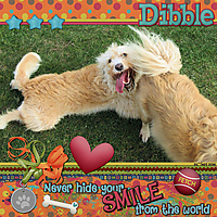 dibble_smile_MFish_GreatWideOpen_01_sml.jpg
